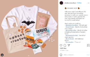 Fat Cat Design - grow your Instagram following by collaboration with influencers and brands