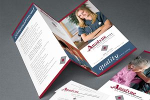 brochure and marketing collateral for Anodyne Corporation